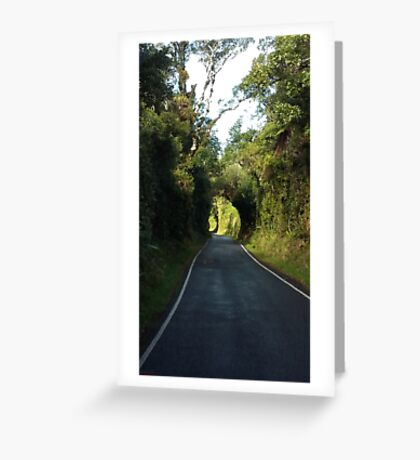 Road to Mt Taranaki Greeting Card