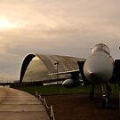 F15 - American Air Museum by Richard Owen