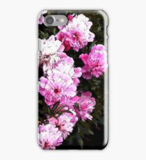 Bower iPhone Case/Skin