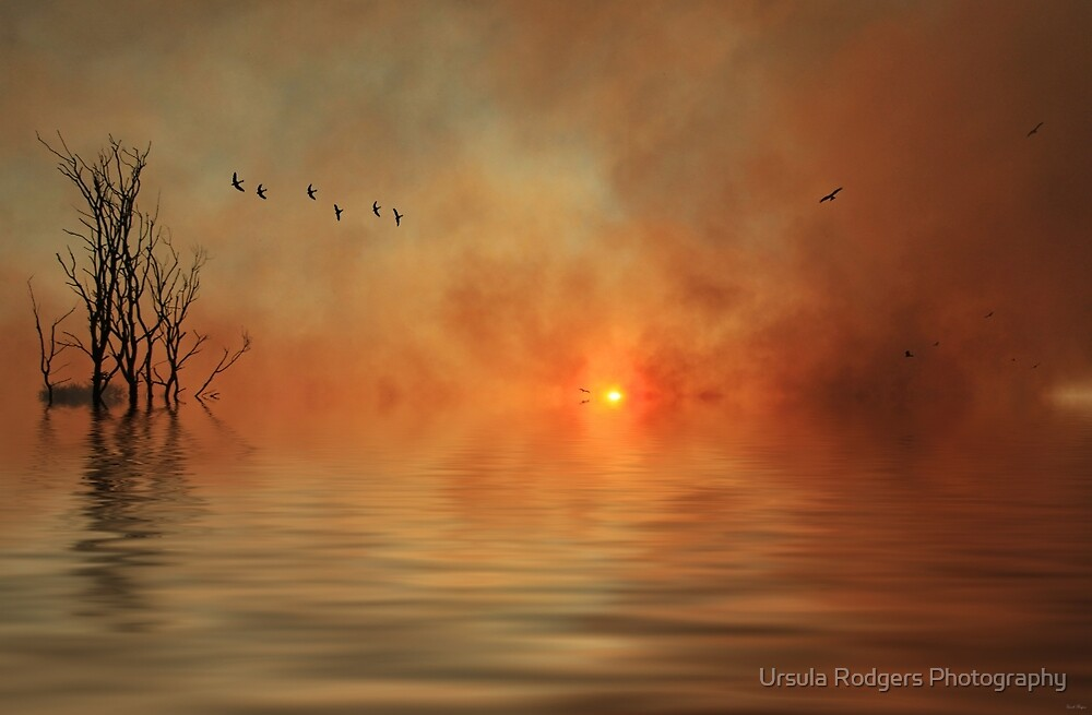 Fire and Flood by Ursula Rodgers Photography