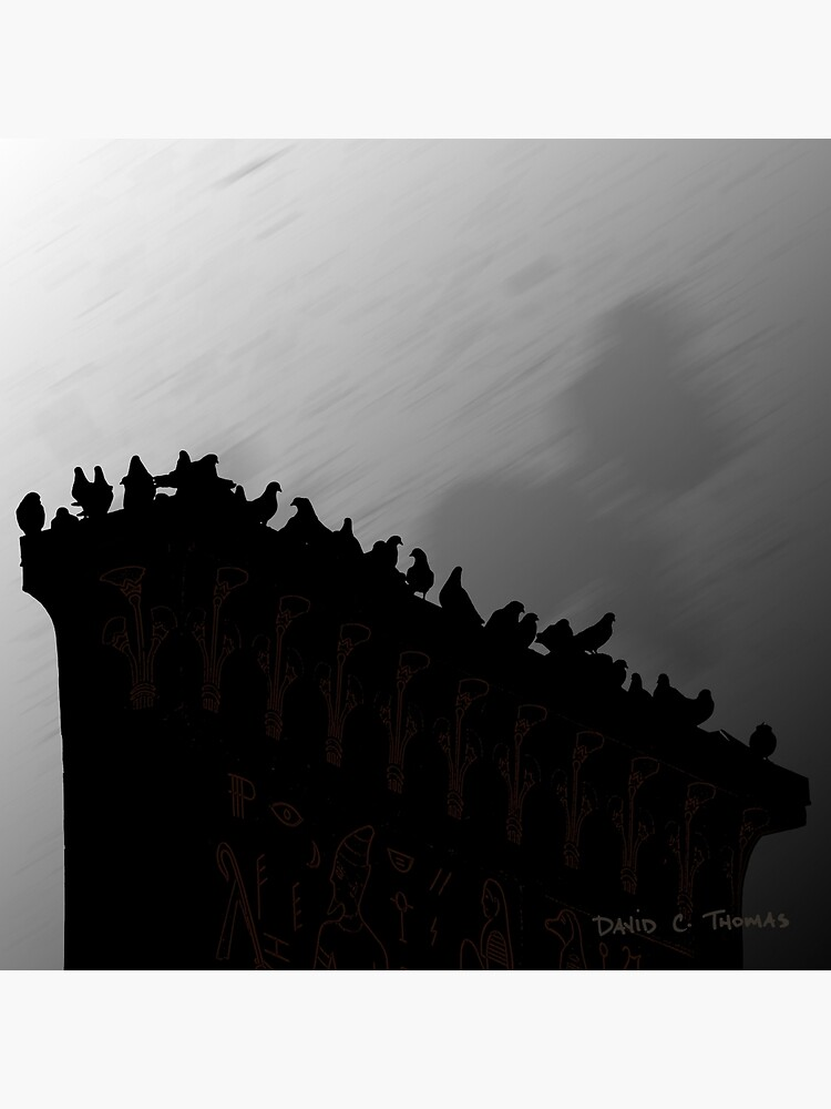Pigeons On The Egypt 2011 by randomarthouse
