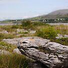 Burren Rock on Galway Bay by Karin Funke