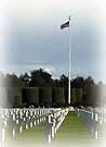 To Honor & Remember . . . by Lucinda Walter