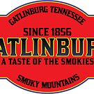 GATLINBURG TENNESSEE GREAT SMOKY MOUNTAINS NATIONAL PARK SMOKIES by MyHandmadeSigns