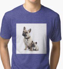 Parenthood Tri-blend T-Shirt