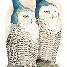Strange Snowy Owls by Goldeen Ogawa
