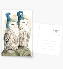 Strange Snowy Owls Postcards