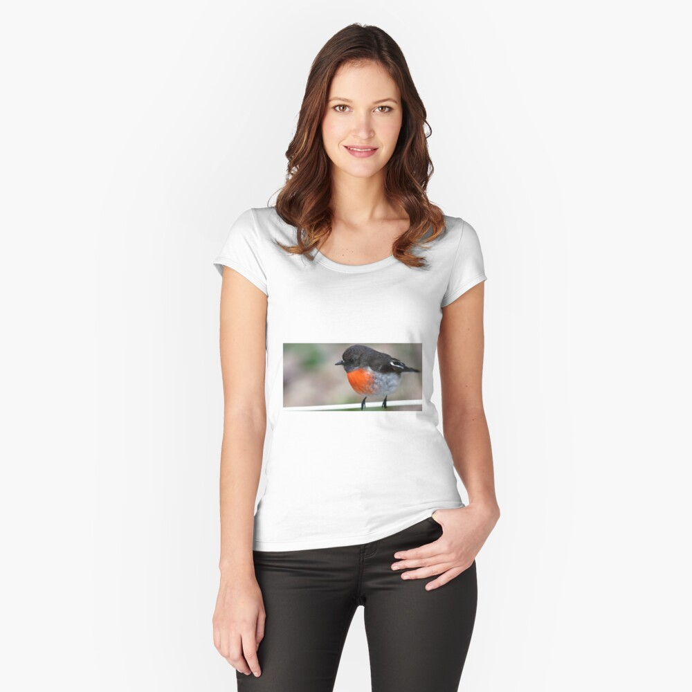 """""""Red Breasted Robin"""" Posing on Fence Wire Women's Fitted Scoop T-Shirt Front"""