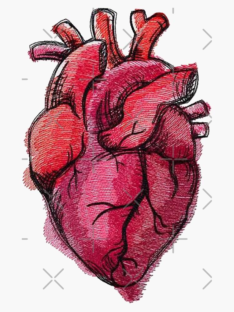 Realistische Herz Zeichnung Sticker von decentart