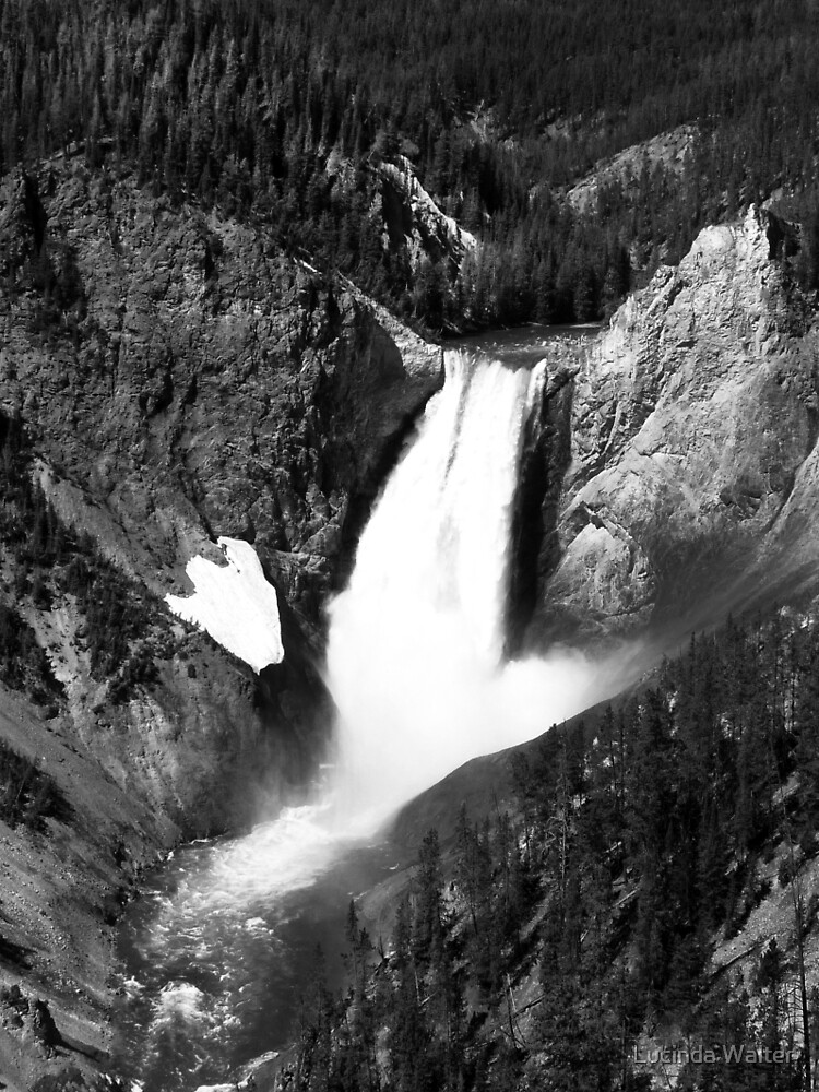 Yellowstone Falls in Black & White by Lucinda Walter