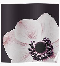 Flowers print, Minimalist, Plant, Nature, Minimal art, Modern art Poster