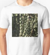 Sharp Shapes and Shadows - Cactus Garden T-Shirt