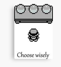 Pokemon - The choice Canvas Print