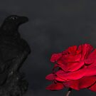 Rosey by reflexio