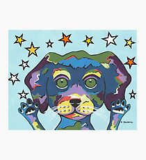Pet Store Puppy - Pick Me Photographic Print