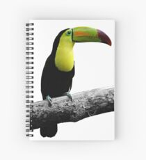 Colorful Keel-Billed Toucan Spiral Notebook
