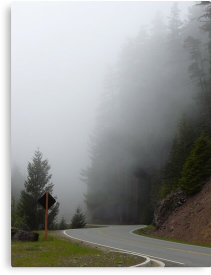 Heading into the Fog by Lucinda Walter