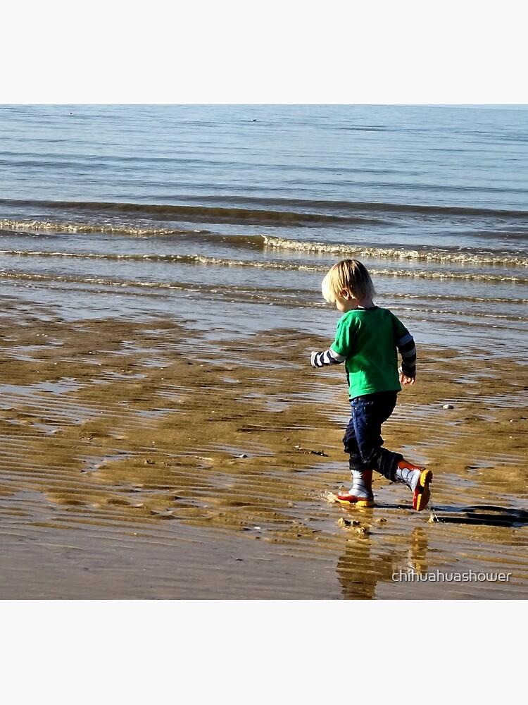Shore run by chihuahuashower
