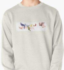Spectrum Pullover Sweatshirt