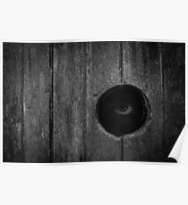 Scary Eye Looking Through Hole In Wood Poster