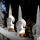 Fence Spears  by Lucinda Walter