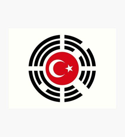 Korean Turkish Multinational Patriot Flag Series Art Print