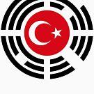 Korean Turkish Multinational Patriot Flag Series by Carbon-Fibre Media