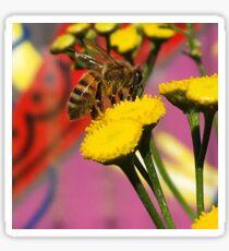 Tansy Bee - Macro Sticker