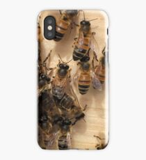 Bees and their Hive iPhone Case
