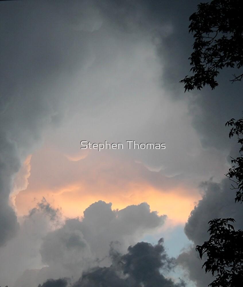 Roar of Thunder by Stephen Thomas