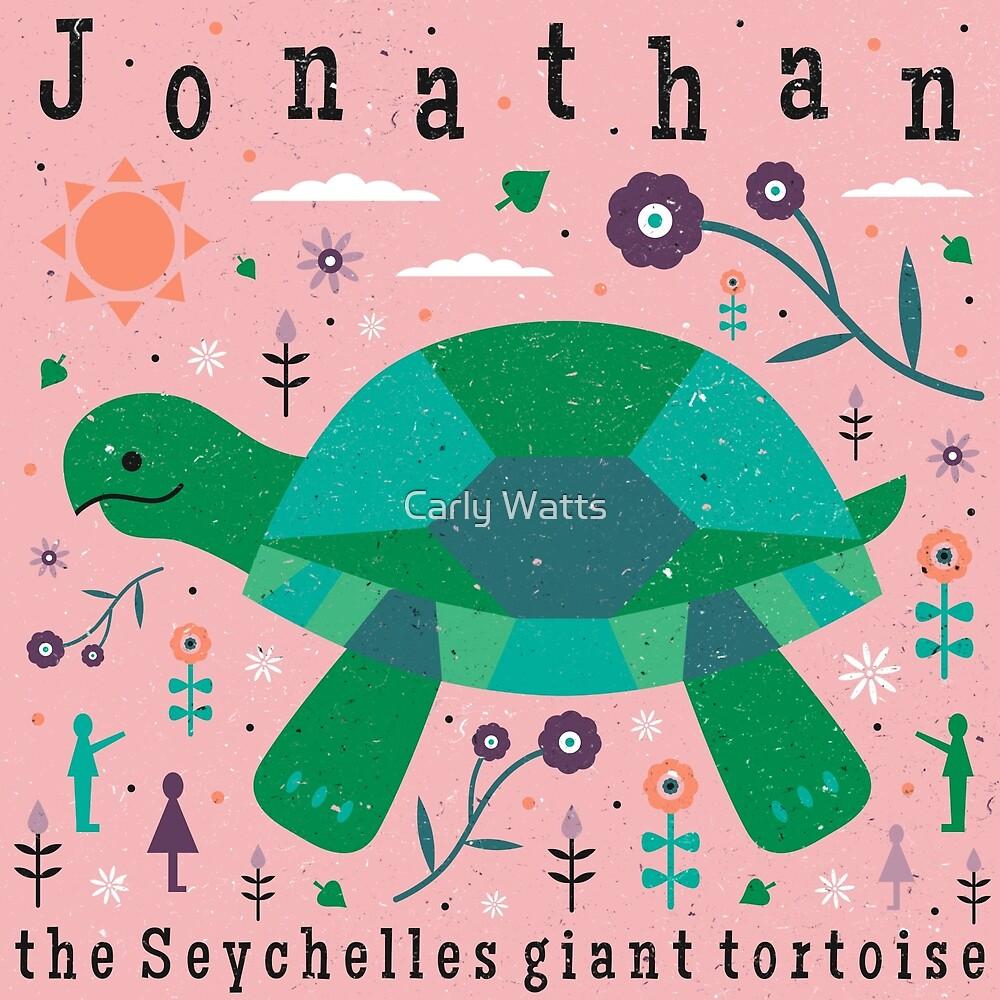Jonathan The Tortoise by Carly Watts