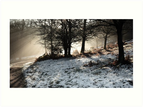 Winter Sun at the Downs by IanJTurner