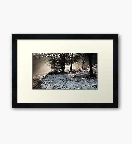 Winter Sun at the Downs Framed Print