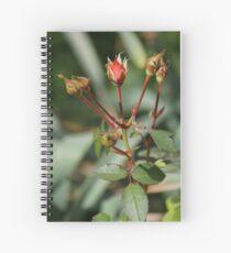 Rose Buds Spiral Notebook