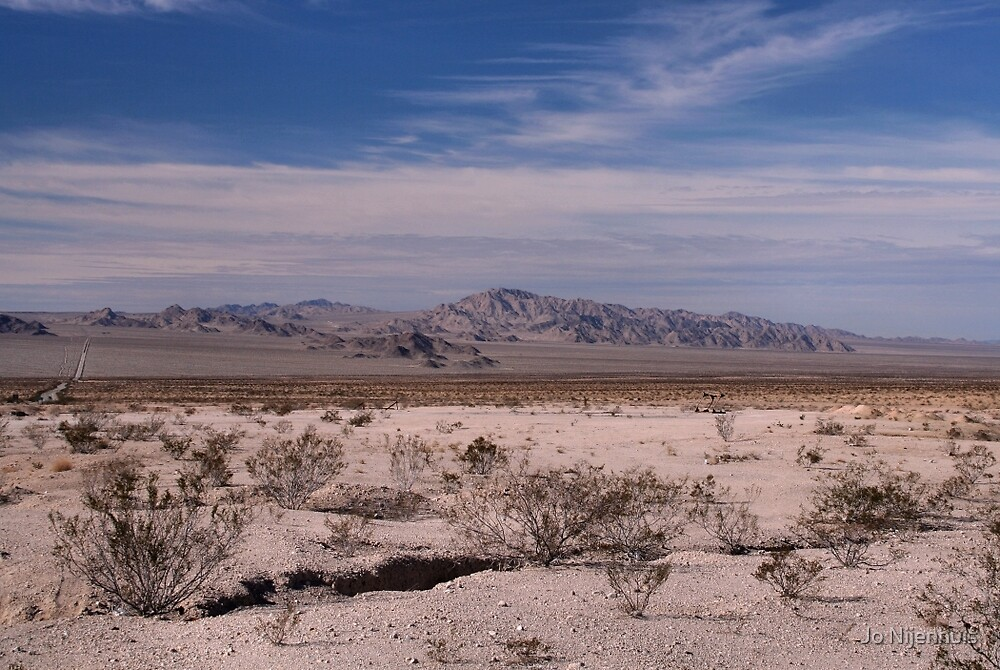 Californian Desert by Jo Nijenhuis