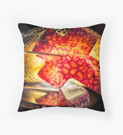Before You Knew Throw Pillow