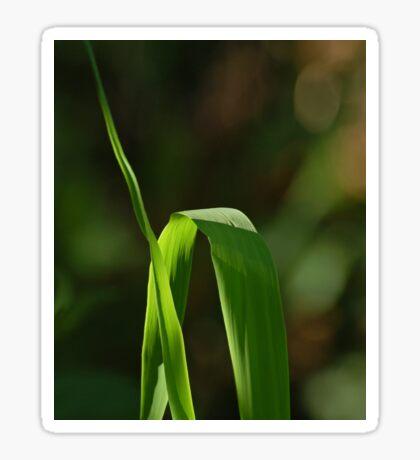 A grass Sticker