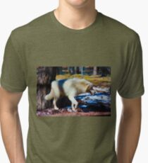 """""""Call of the Wild"""" --title by Jack London Tri-blend T-Shirt"""