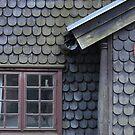 Bucolic Old House by Herbert Shin
