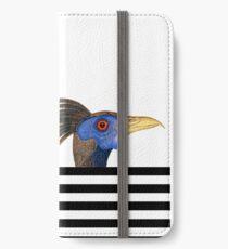 Relativity iPhone Wallet/Case/Skin