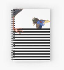 Relativity Spiral Notebook