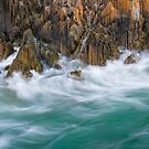 Tarkine Motion by Paul Fleming