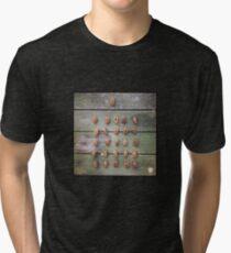 Cicada Shells Tri-blend T-Shirt