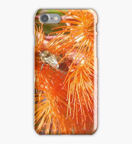 Amazing Auburn iPhone Case/Skin