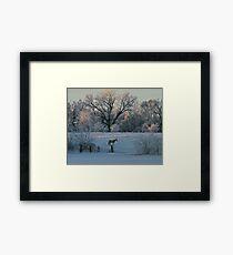 White Horse Winter Framed Print