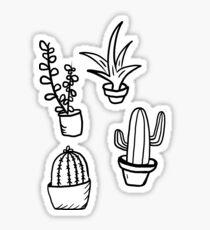 Succulents - Black & White Sticker