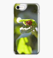 Ladybug on Bottom of Leaf iPhone Case/Skin