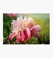 Pink Peony With Splash of Spring Photographic Print