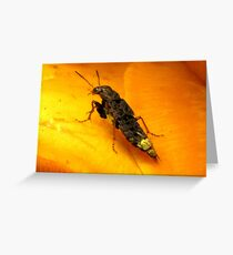"""""""I Wish I Was A Real Firefly"""" Greeting Card"""