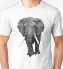 Elephant Slim Fit T-Shirt
